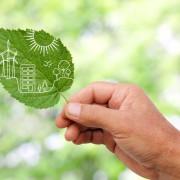 Energie sparen mit Sonnenschutzfolien